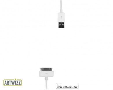 cable usb vers 30 broches